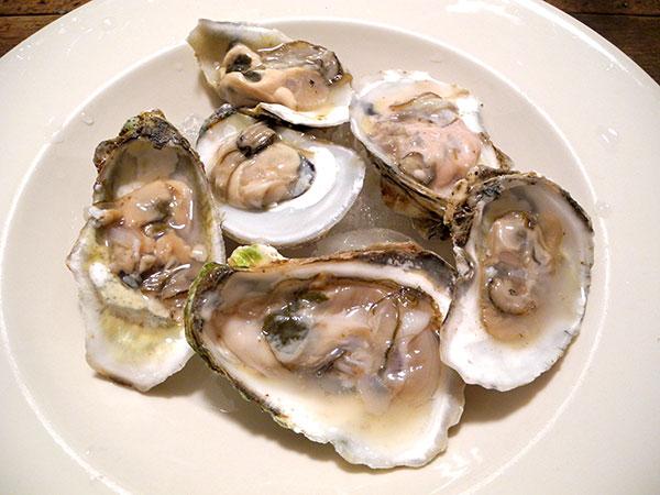 Wellfleet_oysters