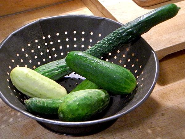 five_cucumbers