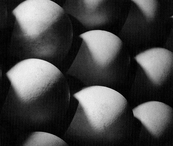 Wiskovsky-Eggs-1929