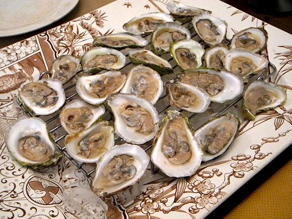 Ninigret_pond_oysters
