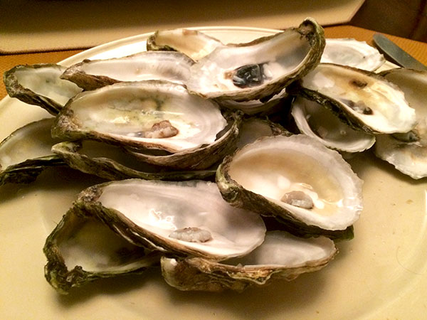 oysters_after