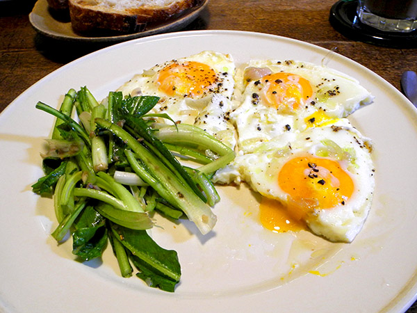 eggs_and_puntarelle