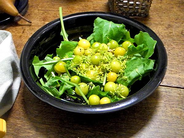 husk_cherry_arugula_fennel_seed_salad