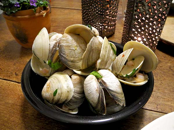 clam_shells_black_bowl