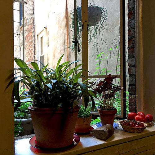 window_breakfast
