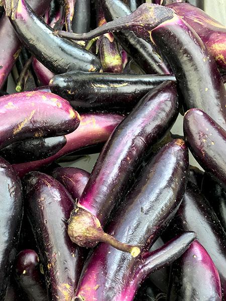 Jap_eggplant