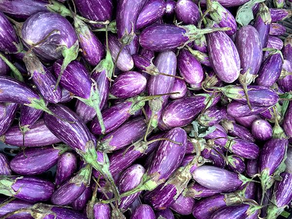 fairy+tale_eggplant