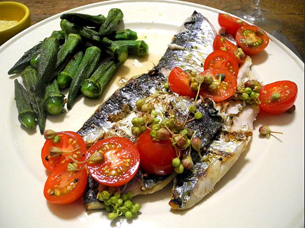 mackerel_tomato_salsa_okra