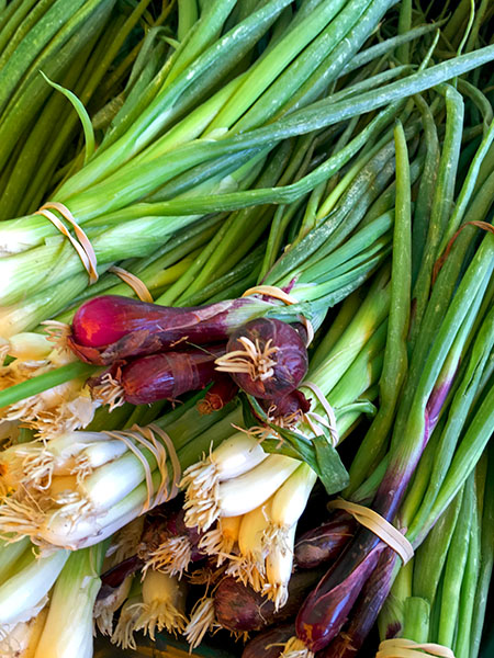 red_scallions