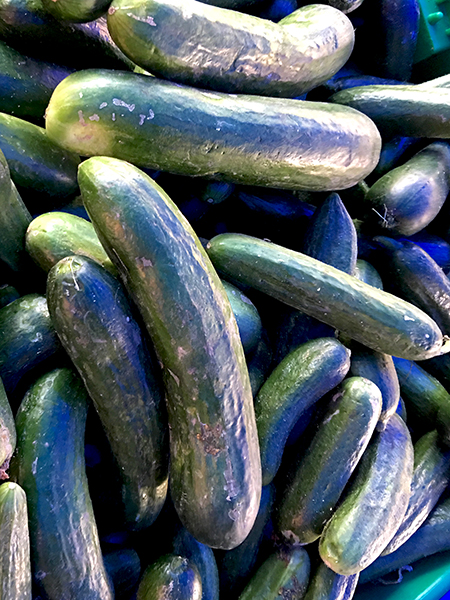 cucumbers_Persian