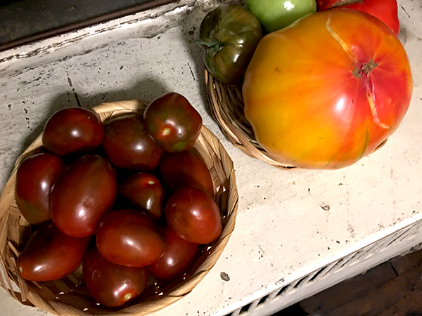 black_cherry_tomatoes_and_others