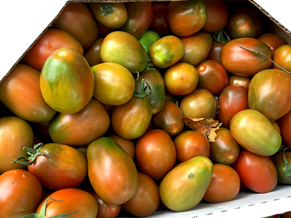 black_plum_tomatoes
