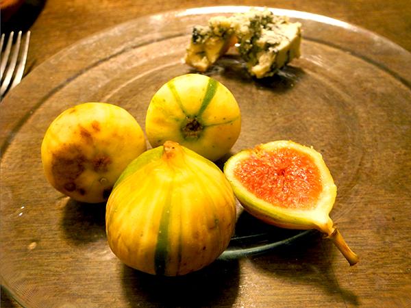 figs_barden