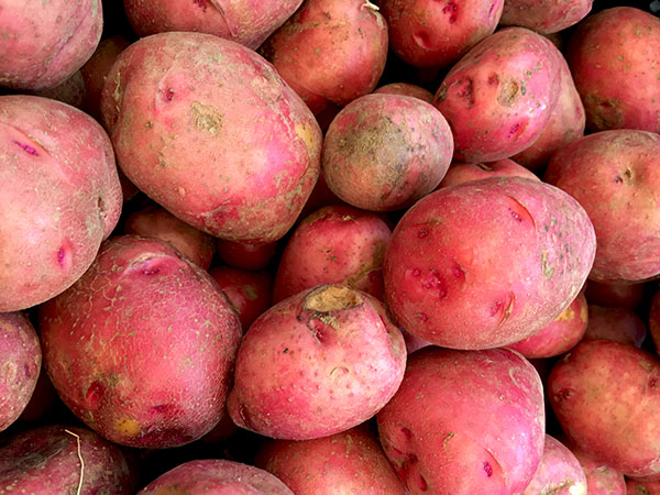 norland_new_potatoes