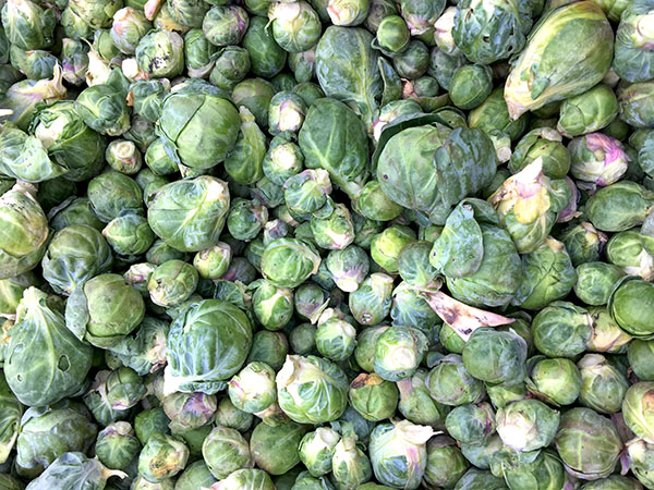 brussels_sprouts2