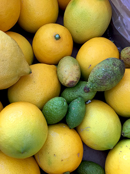 lemons_local